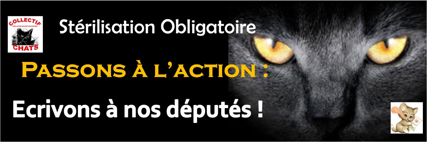 sterilisation-obligatoire-france